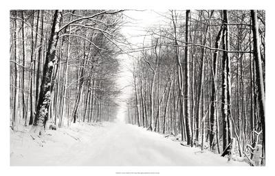 A Snowy Walk III Prints by James McLoughlin