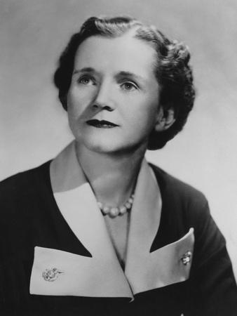Marine Biologist Rachel Carson, after She Published Her First Book 'The Sea around Us' in 1951 Photo