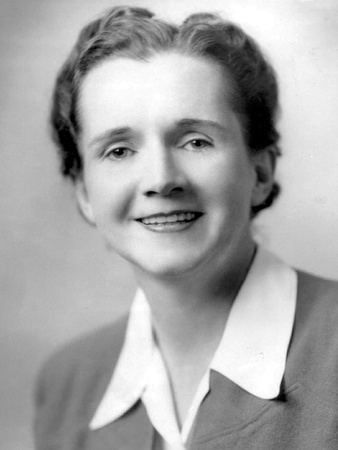 Marine Biologist Rachel Carson in 1944 as an Employee of the U.S. Fish and Wildlife Service Photo