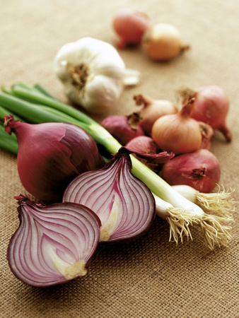 Various Onion Family Vegetables Photographic Print by Peter Howard Smith