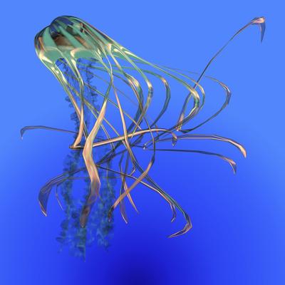 Teal Jellyfish Illustration Prints by  Stocktrek Images