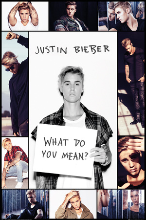 Justin Bieber- What Do You Mean Collage Póster