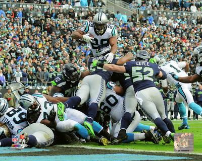 Jonathan Stewart touchdown run 2015 NFC Divisional Playoff Game Photo!