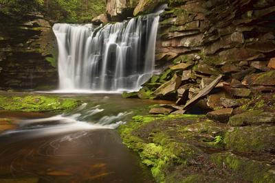 Spring at Elakala Falls Photographic Print by Michael Blanchette
