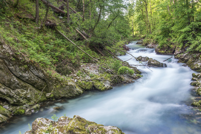 Slovenia, Near Bled, Vintgar Gorge Photographic Print by Rob Tilley