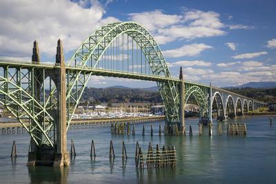 Yaquina Bay Bridge over the Harbor and Marina at Newport, Oregon, USA Photographic Print by Brian Jannsen