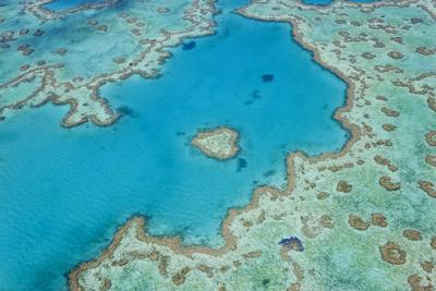 Aerial View of Heart Reef, Great Barrier Reef, Queensland, Australia Photo by Peter Adams