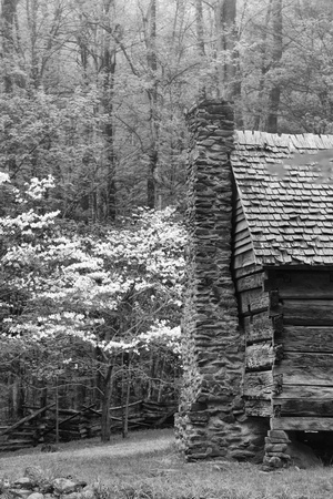 USA, Tennessee, Great Smoky Mountains National Park. Abandoned Cabin Foto di Dennis Flaherty