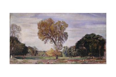 Elm and Oak Trees, 1920 Giclee Print by Armando Spadini