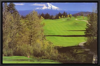 Determination: Golf Framed Canvas Print