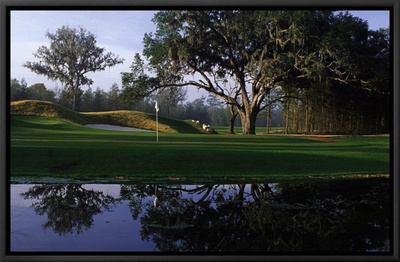 Achievement: Golf Framed Canvas Print