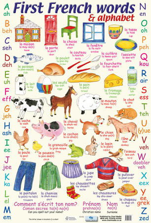 First French Words & Alphabet Poster