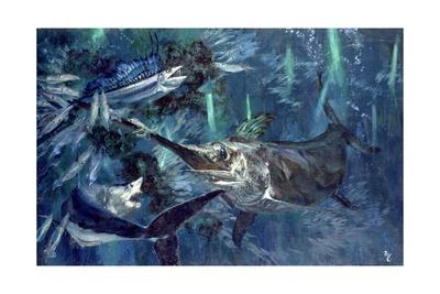 Broadbill, Mako, Lancet Fish, Sea Arrows: in the Glow of the Cyalumes, 1988 Giclee Print by Stanley Meltzoff