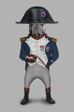 Napoleon (Pets Rock) Prints by  Takkoda