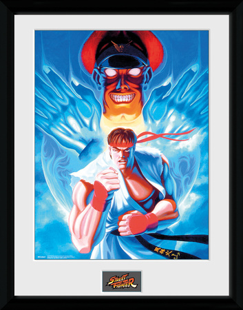 Street Fighter- Ryu And Bison Stampa del collezionista