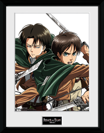 Attack On Titan- Levi Collector-tryk
