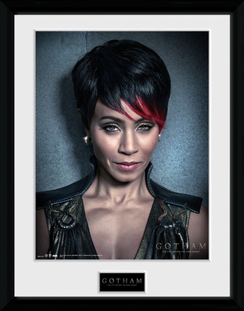 Gotham- Fish Mooney Collector-tryk