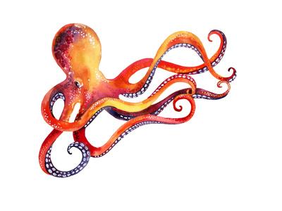 Octopus Art by  tanycya