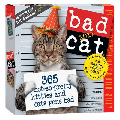 Bad Cat Color Page-A-Day - 2017 Boxed Calendar Takvimler