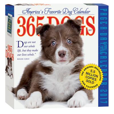 365 Dogs Color Page-A-Day - 2017 Boxed Calendar Kalendarze