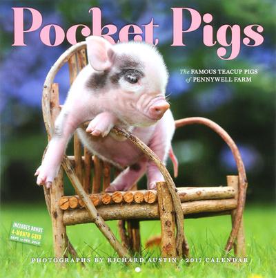 Pocket Pigs - 2017 Calendar Kalendarze