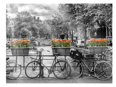 Typical Amsterdam - Panoramic View Kunstdrucke von Melanie Viola