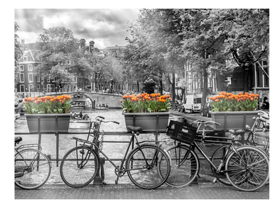 Typical Amsterdam - Panoramic View Print by Melanie Viola