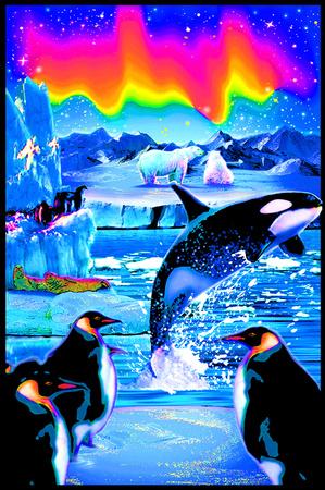 Arctic Aurora Blacklight Reactive Poster Posters