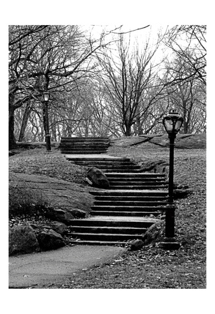 Central Park Stairs To Nowhere Poster by Jeff Pica