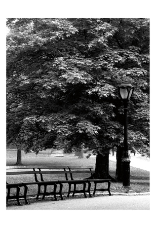 Central Park Benches Posters by Jeff Pica