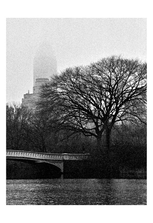 Central Park Bridge I Posters by Jeff Pica