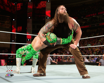 Bray Wyatt 2015 Action Photo