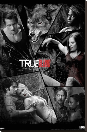 True Blood - Shattered Mirror Stretched Canvas Print