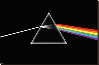 Pink Floyd Stretched Canvas Print