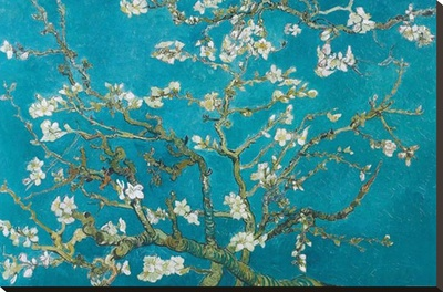 Almond Blossom, San Remy, 1890 Stretched Canvas Print by Vincent van Gogh