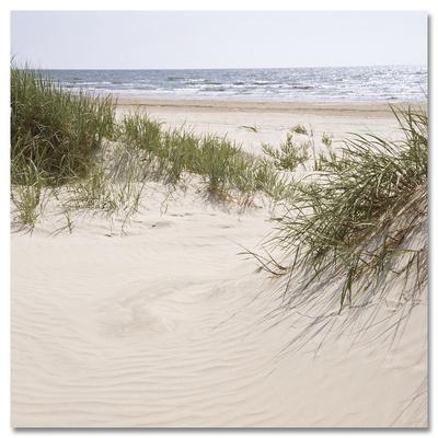 Leaving into a Sand Dune Kunst