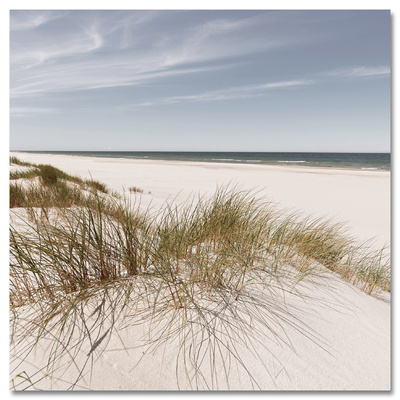 Coastal Dune Hill Poster