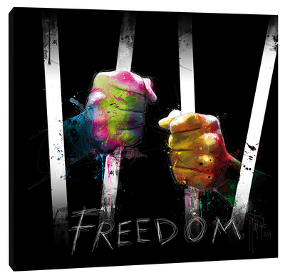 Freedom Stretched Canvas Print by Patrice Murciano