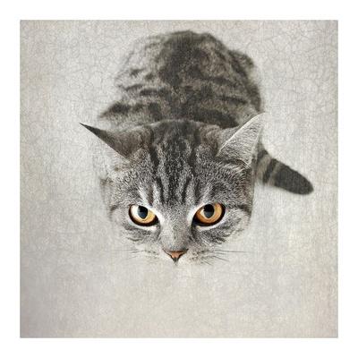 Hello Kitty Poster van Nadia Attura