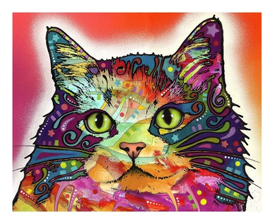 Ragamuffin decorative awesome cat picture by Dean Russo