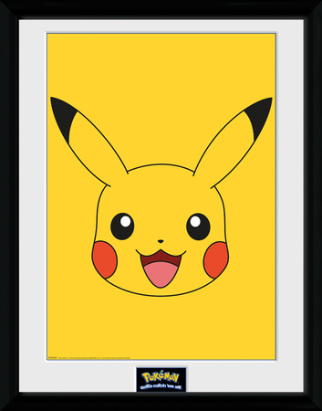 Pokemon Pikachu Collector-tryk