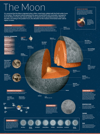 Infographic on the Moon: its Atmosphere, Composition, Lunar Movements, Lunar Phases and More Posters