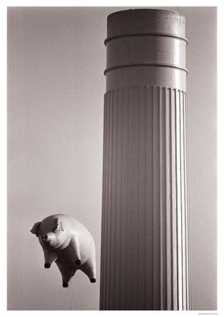Pink Floyd- Flying Pig Poster