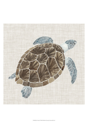 Sea Turtle I Prints by Naomi McCavitt