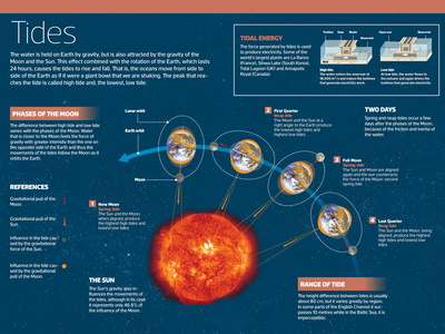 Infographic on Tides, Produced by the Attraction of the Sun and Moon Photo