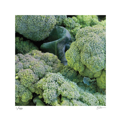 Broccoli Limited Edition by Stacy Bass