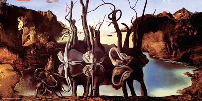 Salvador Dali- Swans Reflecting Elephants Posters by Salvador Dali