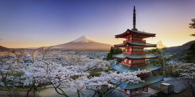 Japan, Yamanashi Prefecture, Fuji-Yoshida, Chureito Pagoda, Mt Fuji and Cherry Blossoms Fotografie-Druck von Michele Falzone