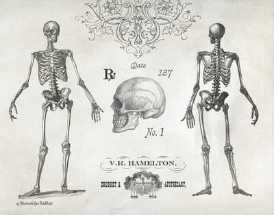 Elegant Skeletons Kunstdrucke von Babbitt Gwendolyn