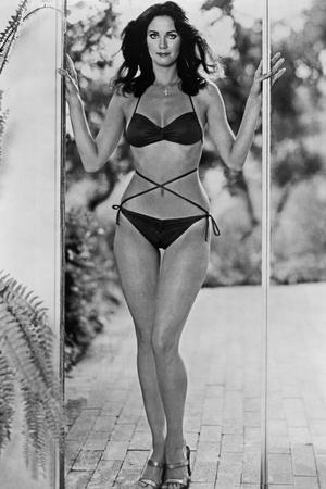 Lynda Carter Posed in Bikini Classic Portrait Photo by  Movie Star News